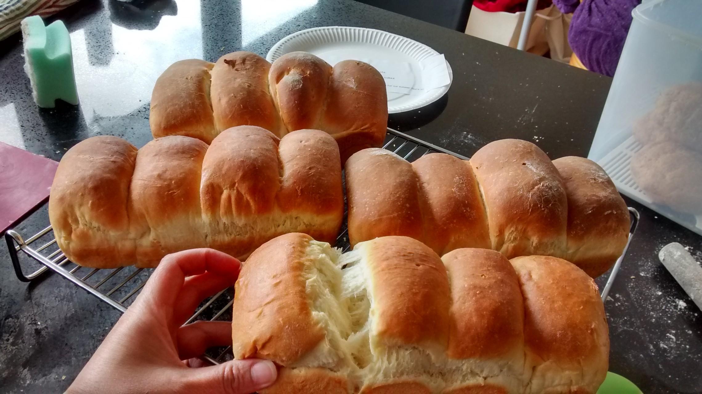 hokkaido bread